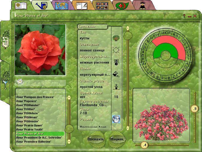 Настоящая энциклопедия растений