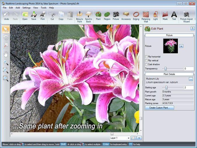 детальная прорисовка растений в Realtime Landscaping Architect
