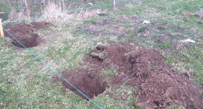 Копаем ямы на месте будущих столбов