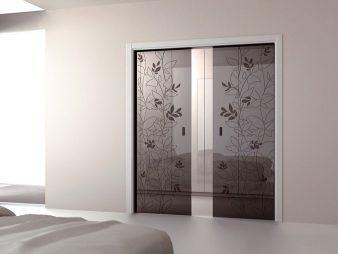 Как и какие выбрать межкомнатные двери?